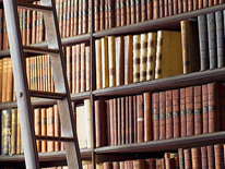 Library of books and ladder